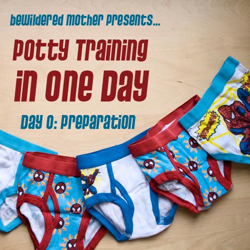this is post number one in my potty training diaries stay tunedill post a new blog each day